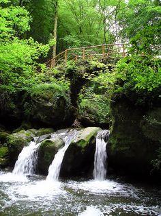 Mullerthal, Luxemburgo /La región de Mullerthal. Esta región también es conocida como la pequeña suiza de Luxemburgo, por su parecido geográfico y proximidad a Suiza, el visitante