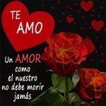 Bellas Rosas Rojas Con Mensajes De Amor