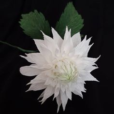 "33 aprecieri, 0 comentarii - Marianne (@marianneweddingdesign) pe Instagram: ""My dahlia...! #creppaperflower #flowers #dahlia #artpaper"" My Flower, Flowers, Dahlia, Plants, Instagram, Art, Art Background, Kunst, Plant"