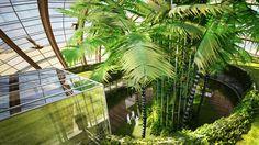 Remistudio's Massive Floating Ark Battles Rising Tides Remistudio Ark – Inhabitat - Green Design, Innovation, Architecture, Green Building