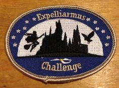 Expelliarmus Challenge - 1st Laxdale Scouts