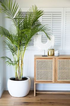 Expert advice: Five steps to a stylish seaside abode - The Interiors Addict,Coastal greenery If you're the sort who dresses a specific way to achieve a specific look then you understand that living room decor goes far beyond s. Style At Home, Home Design, Beach Interior Design, Interior Design Plants, Design Interiors, House Interiors, Plantas Indoor, Decoration Plante, Small Space Design