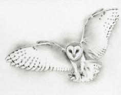 Charcoal Drawing ORIGINAL 11x14 Barn Owl Art Owl by JaclynsStudio