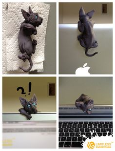 Sphynx Cat Camera Cover by LimitlessEndeavours on deviantART