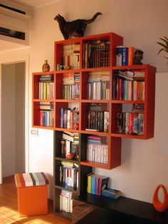 awesome bookshelf!>> love the idea of doing this in a shape the cats can climb!