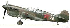 Curtiss P-40K, Starshiy Leytenant Nikolay Kuznetsov (or Starshiy Leytenant N. Golovkov), 436 IAP, Demyansk combat zone, Soviet Union, late 1942.Camouflage Upper surfaces: Dark Green and Dark Earth. Undersides: Sky.© Claes Sundin