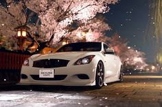 Infiniti G37 coupe under cherry blossoms
