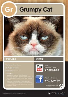 Grumpy Cat stats. The Internet's favorite cat. http://www.purriodictableofcats.com/