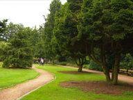 Wandsbeker Sondergarten: Ein Geheimtipp wird 90 --- Seit 90 Jahren gibt es den Botanischen Sondergarten in Hamburg-Wandsbek. Und kaum jemand kennt ihn. Seinen Geburtstag feiern seine Liebhaber mit einem blumigen Dinner.