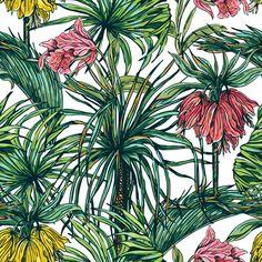 Papel de Parede Floral 1711