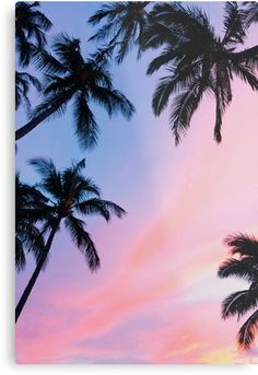 Beautiful Pink Sunset Palm Trees Metal Print by newburyboutique