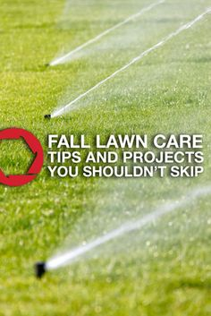 Make sure your yard receives the proper care it needs to stay healthy and strong with these fall lawn care tips and projects you shouldn't skip.