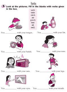 Grade 2 Grammar Lesson 11 Verbs (2)