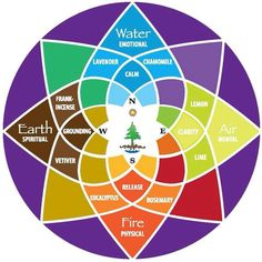 Wellness Wheel One Womans Journey for Healing By Heidi Nielsen When I think of the ways aromatherapy has transformed my life I feel incredibly grateful Whether I am hoppi. Wellness Wheel, C G Jung, Medicine Wheel, Holistic Healing, Book Of Shadows, Sacred Geometry, Herbalism, Krystal, Essential Oils