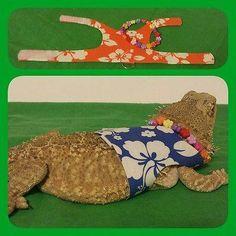 Lil' Bestie bearded dragon reptile harness 'The Tourist'