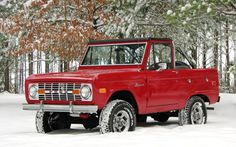 Red Bronco playing in the Snow.