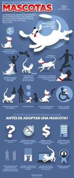 Beneficios de los Amigales! por que es bueno tener un amigo de cuatro patas =) #educación #mascotas #animales