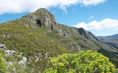 Hiking Elephant's Eye Cave Hike: permits, dogs, hiking trails, swimming Sa Tourism, Elephant Eye, South Afrika, Picnic Spot, Beautiful Rocks, Nature Reserve, Countries Of The World, Hiking Trails, Cape Town