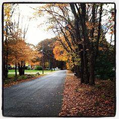 Rhode Island showing some nice fall colors....Emily enjoying a bike ride.