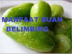 Manfaat buah belimbing, buah belimbing, khasiat buah belimbing, buah belimbing adalah tumbuhan penghasil buah berbentuk khas yang berasal dari Indonesia