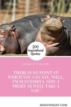 200 Inspirational and Motivational Quotes to help lift you up push you forward or pull you through. Discover words of wisdom insight and encouragement for your journey. Short Inspirational Quotes, Motivational Quotes For Life, Inspiring Quotes About Life, Positive Quotes, Life Quotes, Fear Quotes, Success Quotes, Enjoy Quotes, Confidence Quotes