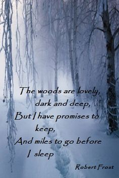 Stopping By Woods On A Snowy Evening - Poem by Robert Frost