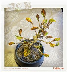 Crafteina: Nueva vida para mi bonsai gracias al ganchillo ✿ A new life for my bonsai thanks to crochet