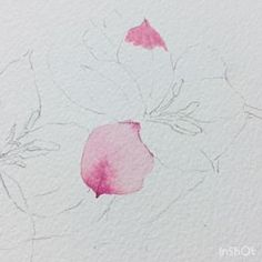 Celestial, Photo And Video, Flowers, Instagram Posts, Photos, Pintura, Pictures, Royal Icing Flowers, Flower