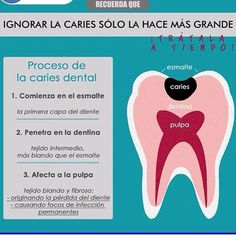 Dentistry, Glow, Simple, Quotes, Medicine, Tooth Brushing, Dental Care, Dental Health, Orthodontics