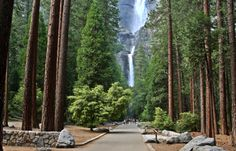 Go see the waterfalls in Yosemite  National Park. Never been there.