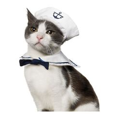 Dogloveit Small Dog Cat Puppy Adjustable Sailor Costume Hat and Cape/ Tie 2pcs * Click on the image for additional details. (This is an affiliate link and I receive a commission for the sales)