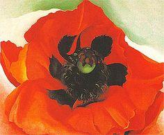 Georgia OKeeffe Poppy 1927