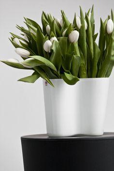 Aalto Vase Savoy Iittala