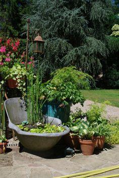 Sur une terrasse, on peux créer un mini-jardin d'eau en un clin d'oeil. Pourquoi ne pas utiliser un vieux tonneaux de bois ou des baignoires!
