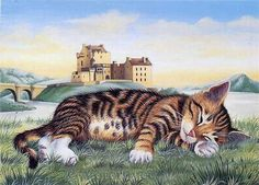 1 марта Всемирный день кошек: lillyho