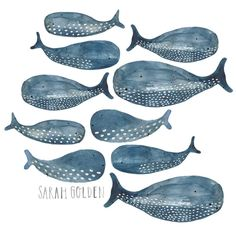 Whales, watercolor and gouache by Sarah Golden