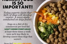 "Today, ninety-six percent of pet owners around the globe are feeding dry commercial pet foods. Of those 96%, there is a large majority that believes dried commercial pet food is really all their pet needs and would never stop to consider the benefits of adding fresh ""human food""."