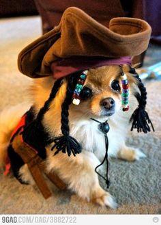 Because Johnny Depp is too mainstream (OMG! Soooo Cuteeee)