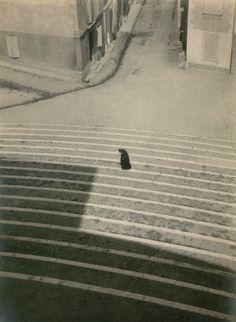 Laszlo Maholy-Nagy, Arles , ca 1929.