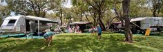 Spacious and shady campsites for caravans, tents and camper trailers Forest Glen, Caravan Holiday, Choose The Right, Mandalay, Camper Trailers, Caravans, Campsite, Caravan Parks, Australia