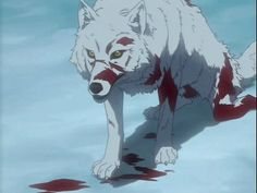 """""""It is the wounded wolf that hollers first."""" Remember that when someone takes offense at what you have said ~ even when you were making a general statement. . ."""