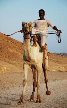 Ababda Man from the Sudan