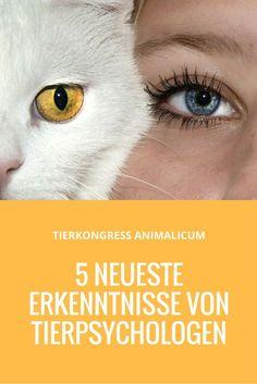 Tiere Bedeutung Psychologie