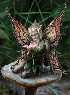 Mushroom Fairy  by Anne Stokes