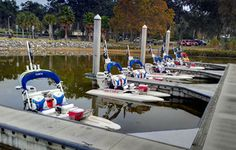CraigCat Guided Boat Tours & Boat Rental Club — Mount Dora, Florida Pack Your Bags, Boat Rental, Boat Tours, Florida Travel, Staycation, Day Trip, Small Towns, Places To Travel, Parks