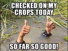 Too much water kills! LOL
