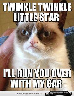 Grumpy Cat - Twinkle Twinkle Little star