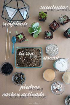DIY succulent terrarium supplies   Materiales para hacer tu propio terrario de suculentas   casahaus.net