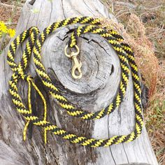 Attention - getting yellow, gold and black Mil. spec. Paracord leash for  the dog on the go....