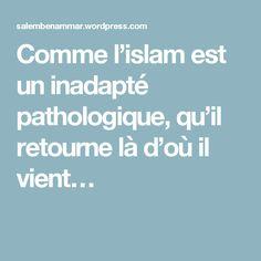 Comme l'islam est un inadapté pathologique, qu'il retourne là d'où il vient…